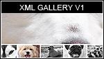 XML Gallery V1.0