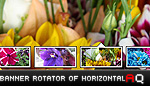 Banner Rotator of Horizontal &#13;