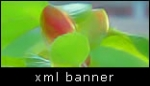xml banner rotator slideshow gallery v1