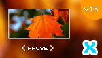 XML Image Gallery v15