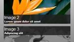 Scrolling-Loop Images Vertical Bar