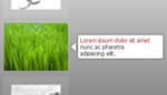 Advanced Images Slider Vertical