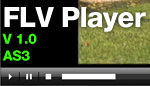 FLV Player V1.0