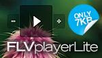 FLV player Lite