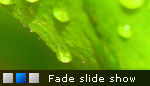 Fade in - Fade out Slideshow