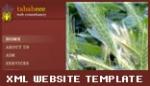 xml business template xml website v3